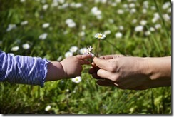 bigstock-Giving-48698201(1)
